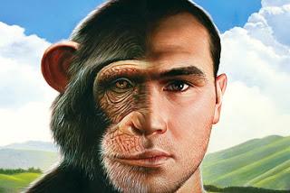 monkey_0930