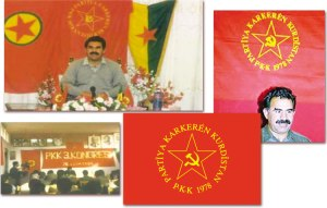 100_101_PKK_Apo