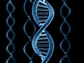 DNA111