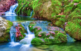 Nature-Waterfall-Beautiful-Wallpaper-Widescreen-Image