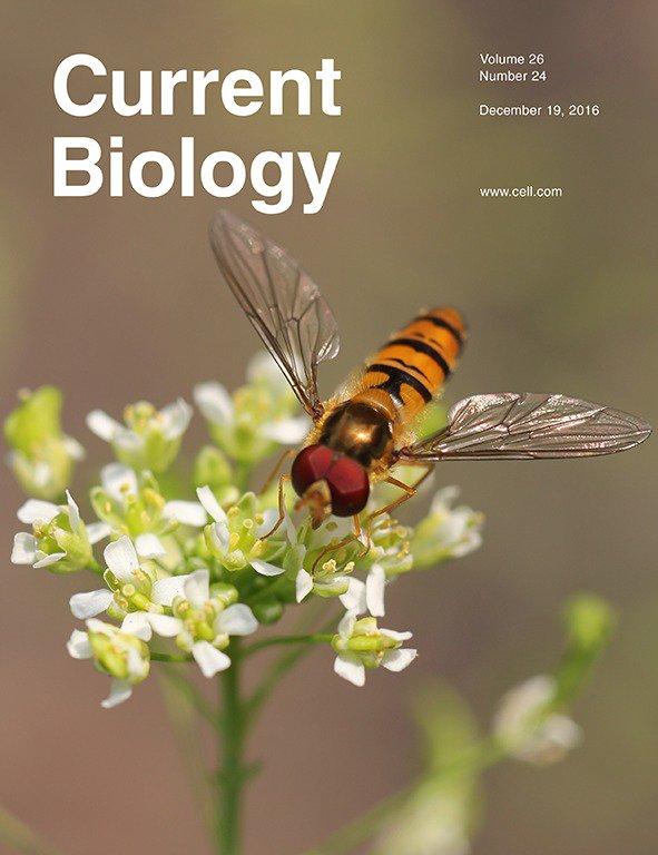 current-biology